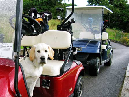 Up front in the golf buggy