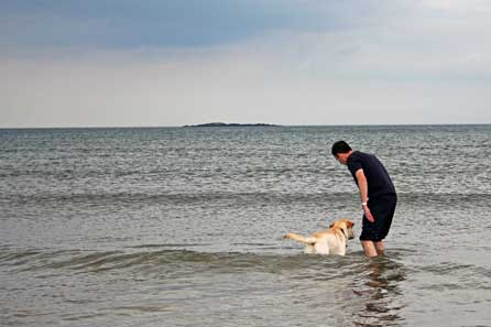 Steve and Harry in the sea