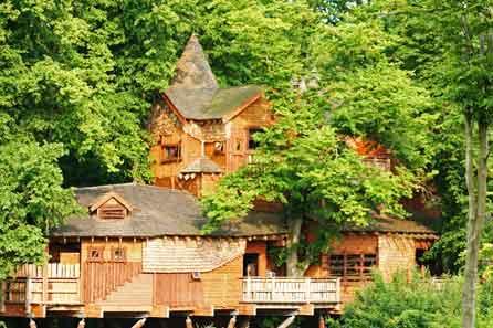 The Alnwick Tree House