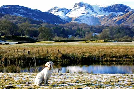 Harry posing by the tarn in front of snow topped mountains