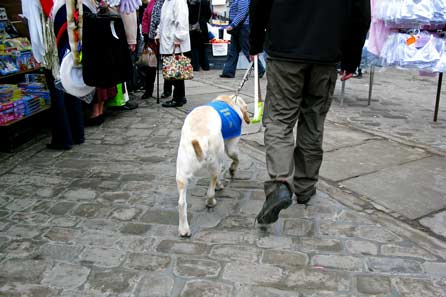 Harry heading for the underwear stall