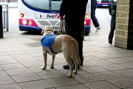 Harry at the bus station