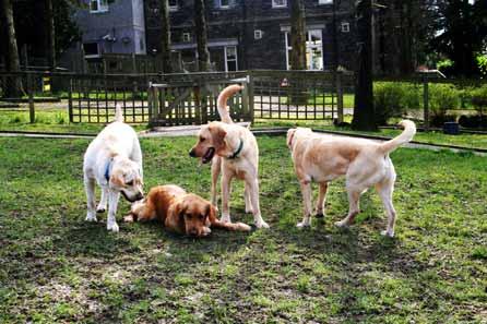 Harry, Maggie, Alfie and Simon